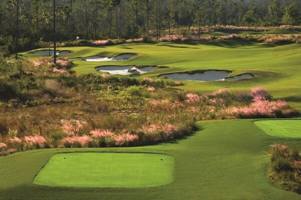 The Preserve Golf Club #16 Par 3