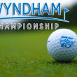 Fantasy Golf Picks Odds and Predictions 2014 Wyndham Championship