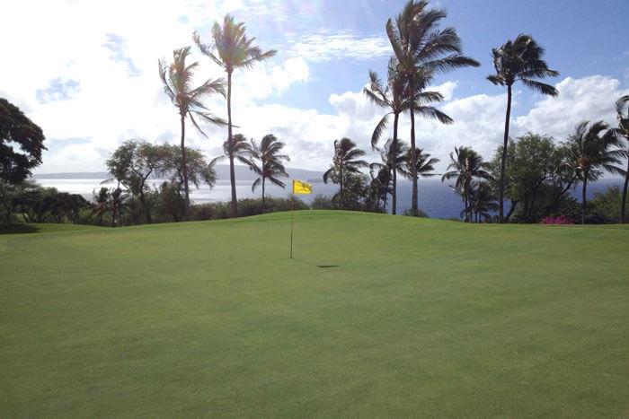 Wailea Emerald Gold a Fun Golfing Combination