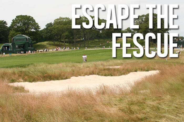 How to Escape Fescue Grass Without Ruining Your Round
