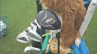 Is Rory Signing with TaylorMade?